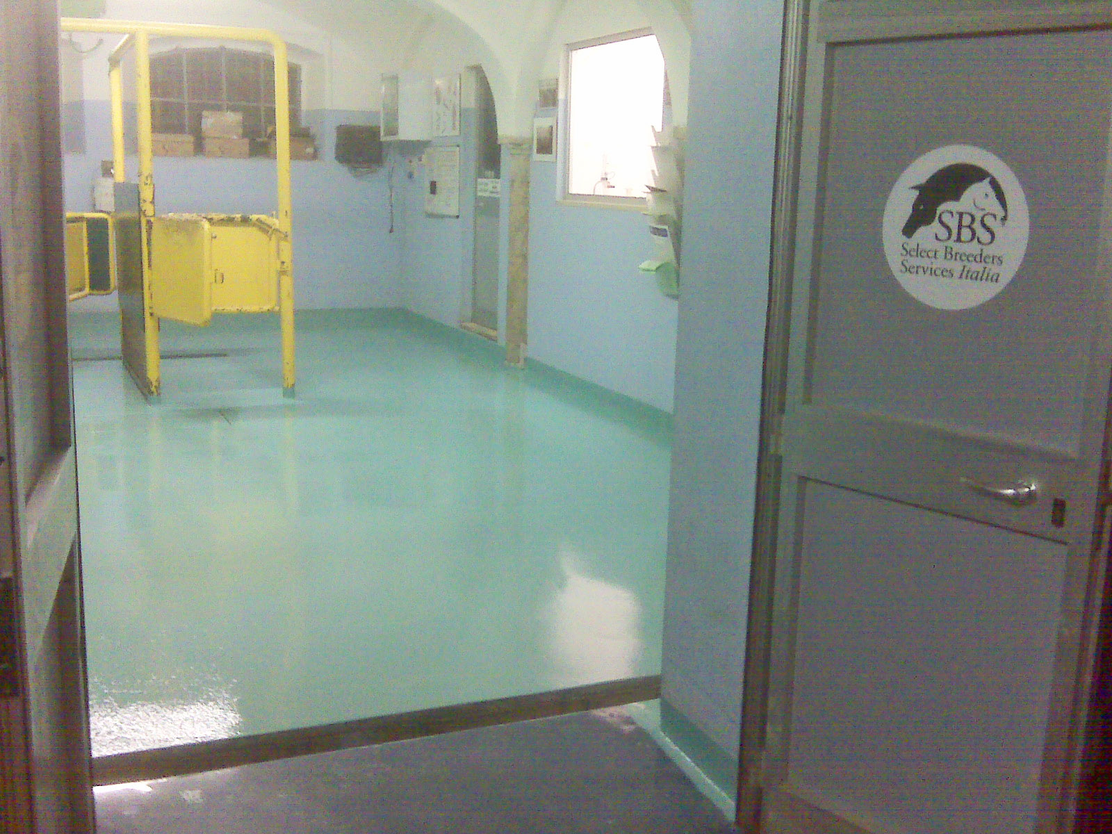 Clinica Veterinaria verniciata SAN DANIELE PO (10)