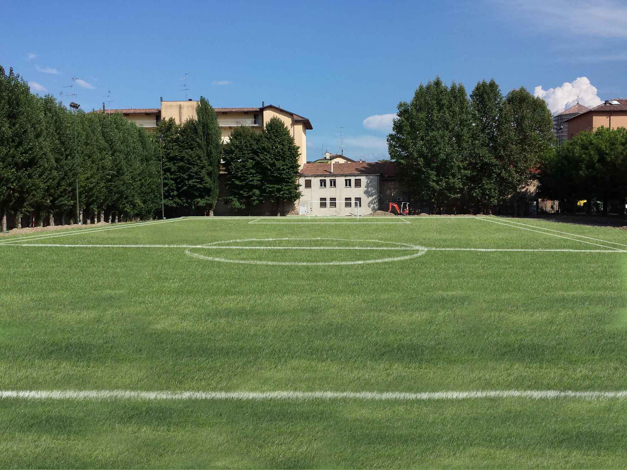 Soccer Field made with natural grass in Carpi (MO)